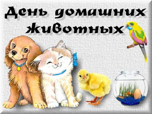 30 ноября - Всемирный день домашних животных