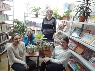 Все о декоративно-лиственных растениях