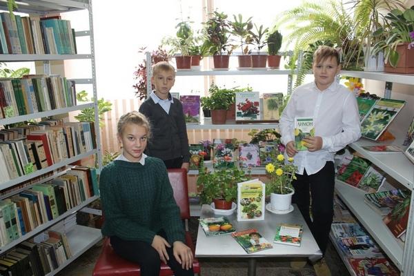 Фруктовый сад на подоконнике