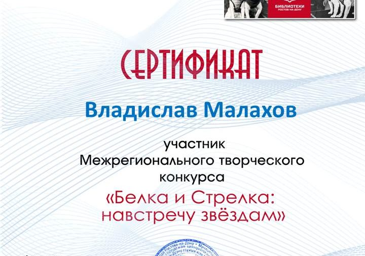 Сертификаты Межрегионального творческого конкурса «Белка и Стрелка: навстречу звёздам»