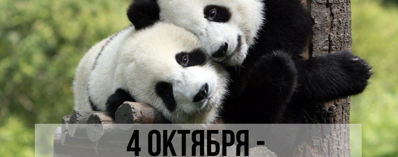 Всемирный день защиты животных!