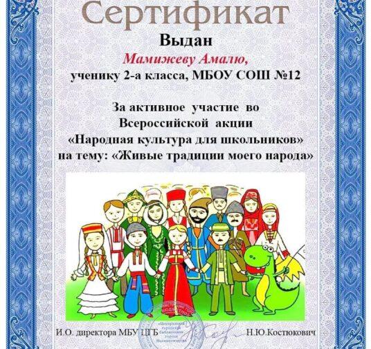Сертификаты Всероссийской акции «Народная культура для школьников»