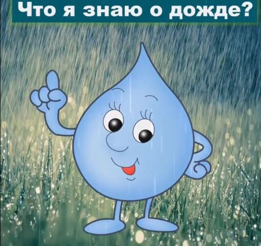 Что я знаю о дожде?